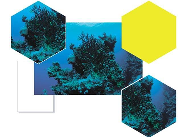 Как в кореле обрезать изображение под формат