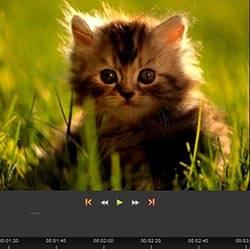 Кадрирование видео онлайн